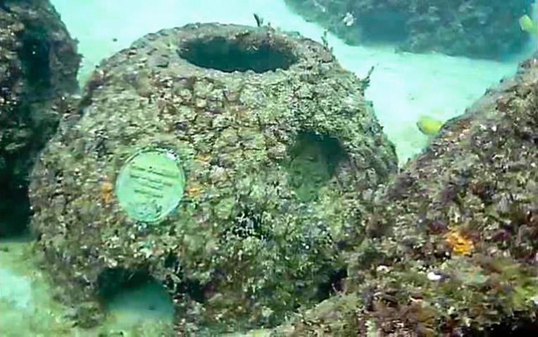 Eternal-Reefs-7-11-2011_023-1