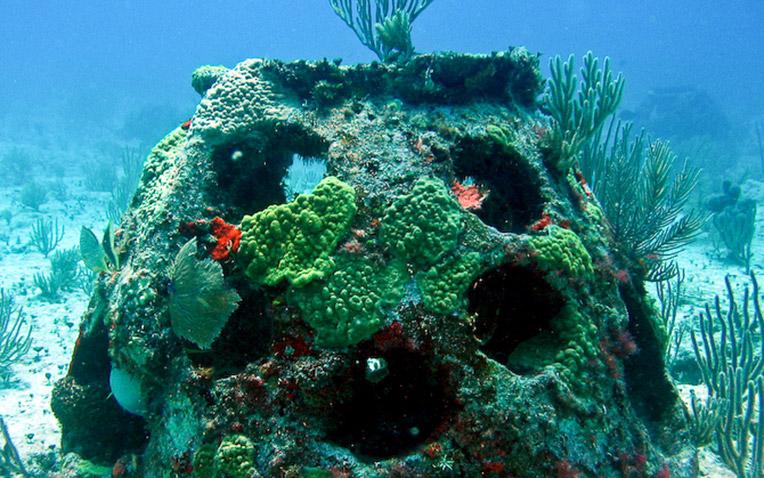 Eternal Reefs - burial at sea reef ball