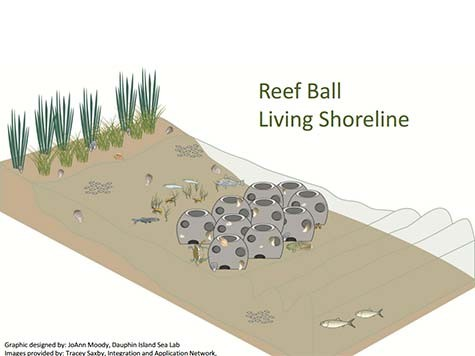 1-Reef-Ball-Living-Shore-Line-Design