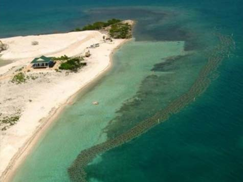 3-Reef-Ball-Living-Shore-Line-Airel