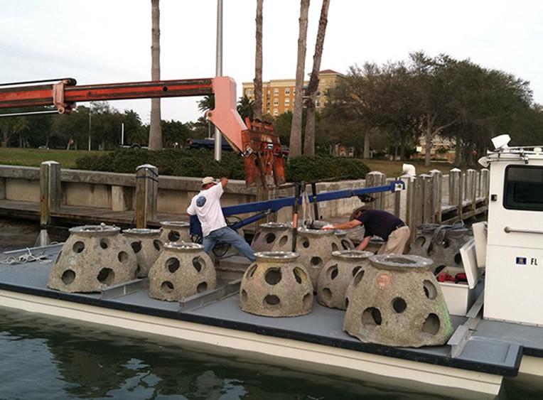 Eternal-Reefs-Placement-09-Sarasota-FL-2-27-12-059