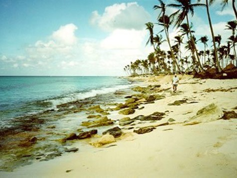 Living-Shoreline-and-Beach-Erosion-Control