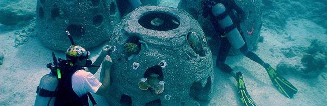 Reef Balls - Coral Transplanting